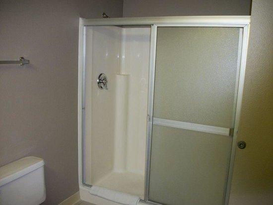 Edgewater Hotel & Casino: Sedona Tower - Shower (No tubs)