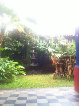 Hostel Libertad: Our garden....