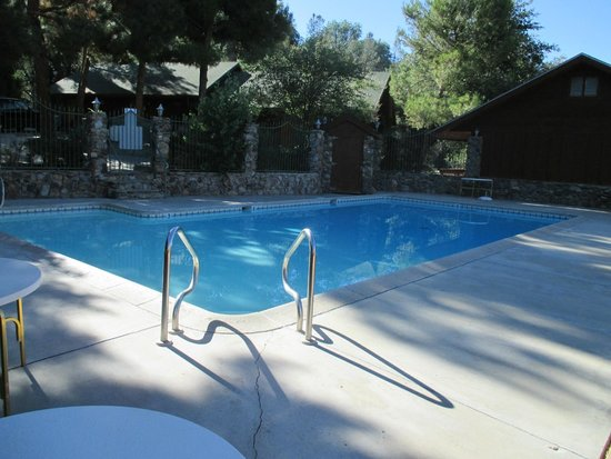 Whispering Pines Lodge: Pool is huge with a big shallow area perfect for kids