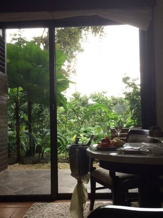 Tabacon Grand Spa Thermal Resort: Overlooking the rain forest