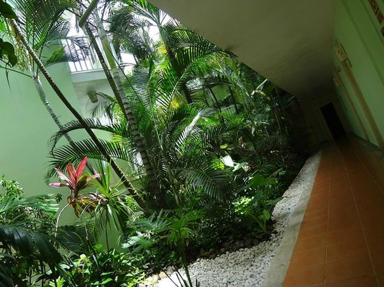 Excellence Punta Cana: The hallways of the buildings. Felt like paradise. And it smelled amazing!