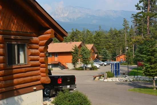 Becker's Roaring River Chalets: The view from our cabin window.
