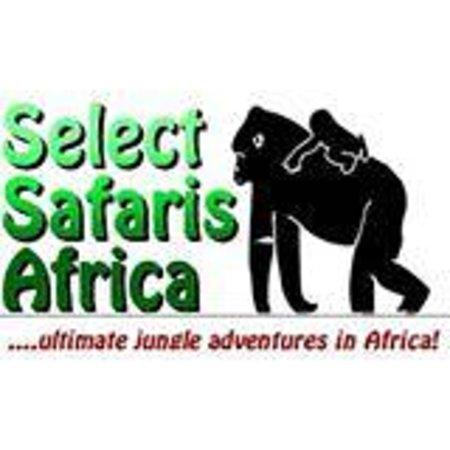 Rwanda Safari Trips - Gorilla Trekking Day Tour