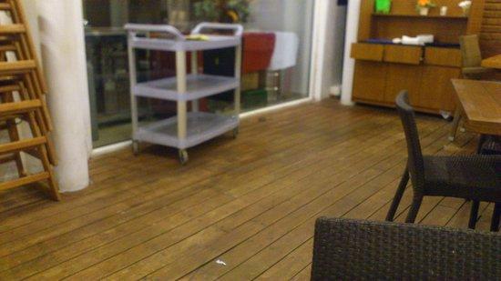 Kolymbia Beach Hotel: myszki