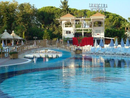 Lonicera World Club & Beach: На территории
