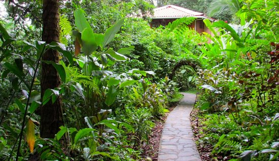 La Paloma Lodge: Path to our private rancho