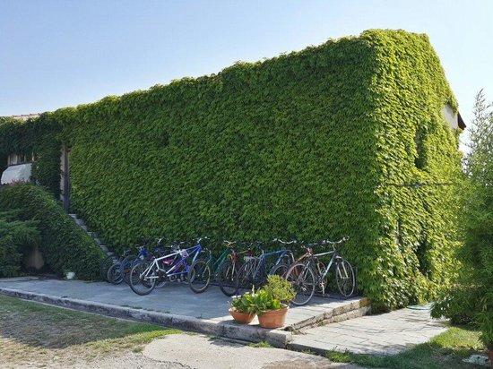Thrassa Hotel: You can ride a bike around.