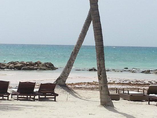 Sanctuary Cap Cana by AlSol : Beach