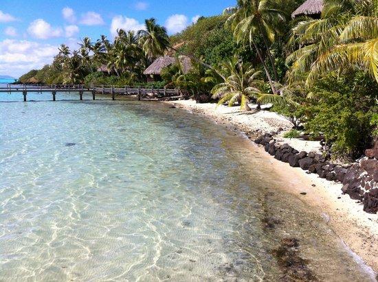 Sofitel Bora Bora Private Island : plage et vue sur les chambres-bungalow