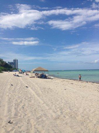 Design Suites Miami Beach : Castle Beach