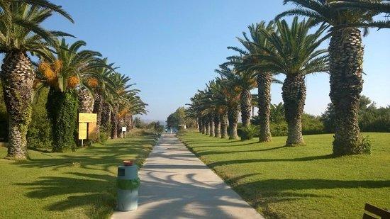 Caravia Beach Hotel: Allée pour aller à la plage.
