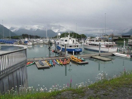 Best Western Valdez Harbor Inn: The Valdez harbor. Sea Kayaks are waiting for the next tour
