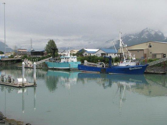 Best Western Valdez Harbor Inn: Fishing boats in the harbor