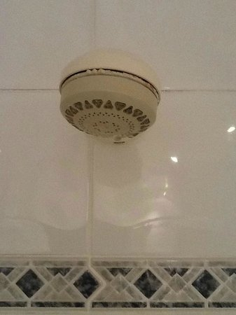 Hallmark Hotel Bournemouth Carlton: Shower head held on with mastic