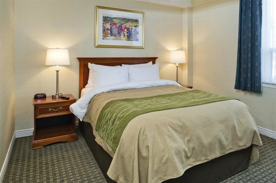 Comfort Hotel Downtown : Suite-QueenBed Room