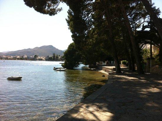 Aparthotel Playa Mar & Spa: The pine walk