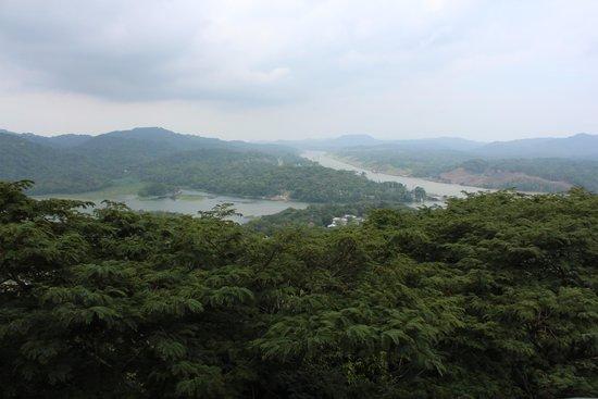 Gamboa Rainforest Resort Aerial Tram Tour : Lookout