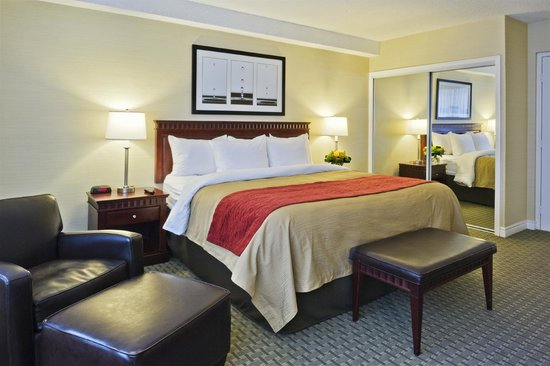 Comfort Hotel Downtown : Executive King Room