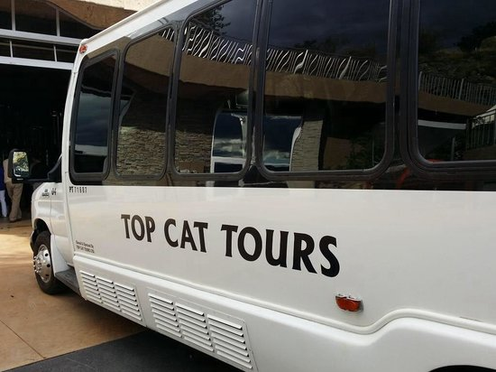 Top Cat Wine Tours and Charters