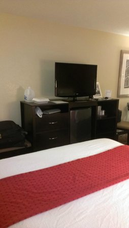 Holiday Inn Anderson : TV, Fridge, Plenty of drawer space
