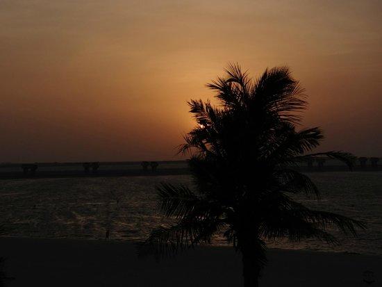 JA Jebel Ali Beach Hotel: Blick aus Hotelzimmer Palm Tree Court