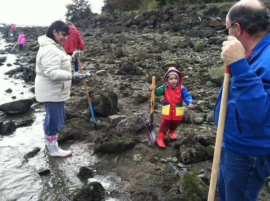 Harborview Inn & RV Park: Clamming clinics all year long for all ages