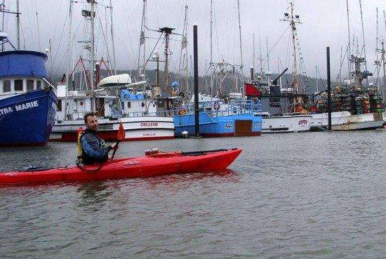 Harborview Inn & RV Park: Marc of Kayak Tillamook County