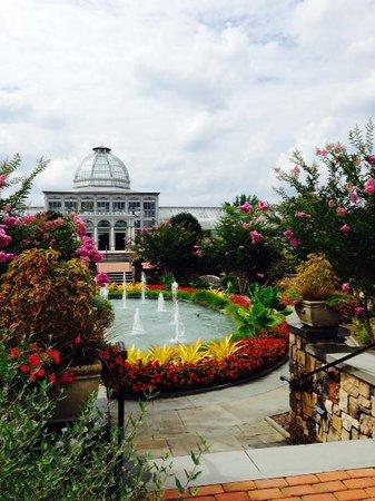 Louis Ginter Gardens Flowers Picture Of Lewis Ginter Botanical Garden Richmond Tripadvisor