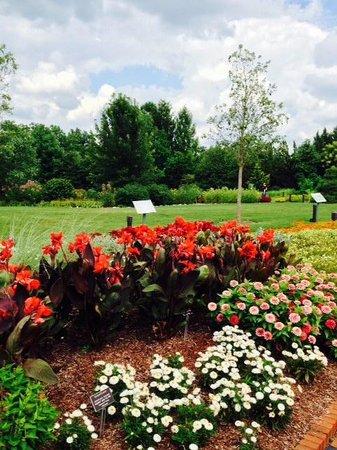 Lewis Ginter Botanical Garden: LOUIS GINTER GARDENS & FLOWERS