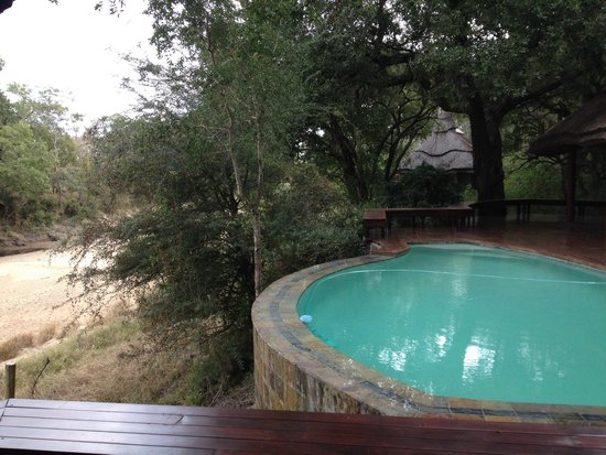 Imbali Safari Lodge : Piscina dell'imbali