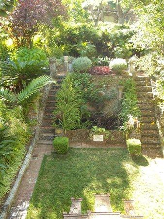 Etonnant Gibraltar Botanic Gardens (The Alameda): The Dell
