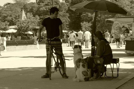Retiro Park (Parque del Retiro): En el parque
