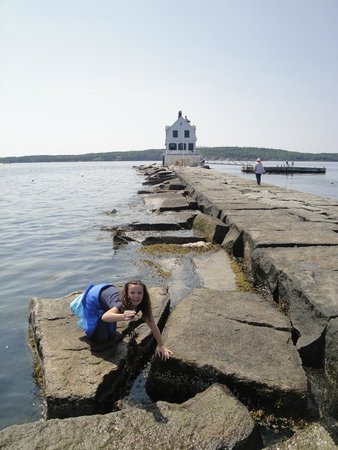 Rockland Breakwater Light: Checking out the water at Breakwater Light