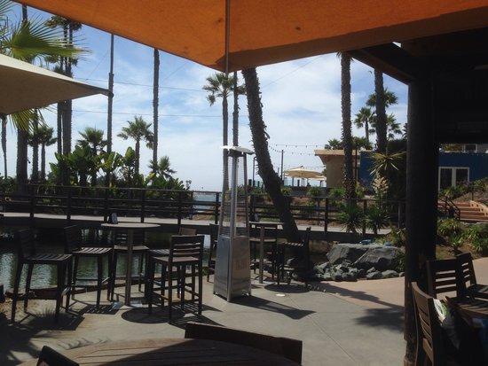 Paradise Point Resort & Spa: Bar area
