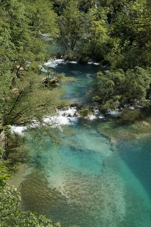 Plitvice Lakes : clear water
