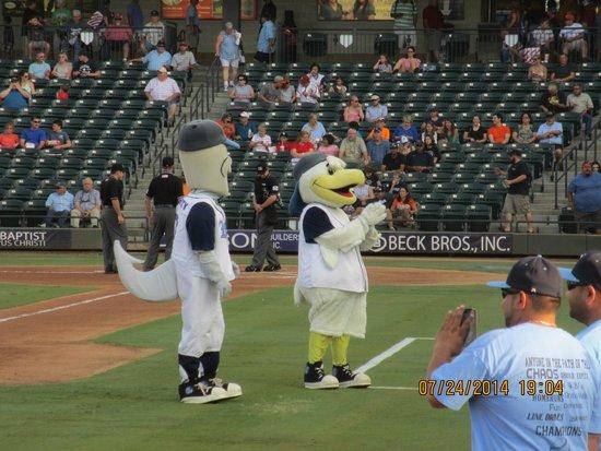 Best Western Corpus Christi: Whataburger baseball mascots