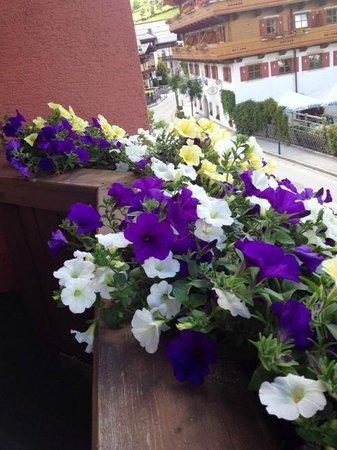 Hotel Sonnblick: Flores da sacada.