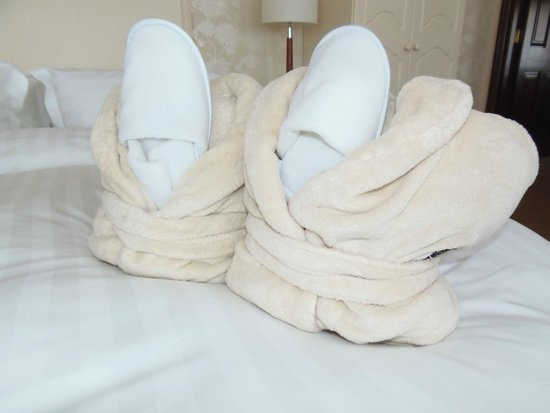 Fitzgerald's Woodlands House Hotel: robes