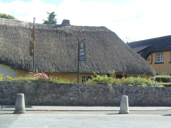 Fitzgerald's Woodlands House Hotel: village