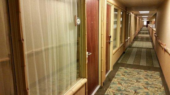 Maui Sands Resort & Indoor Waterpark: Room 3202 Exterior