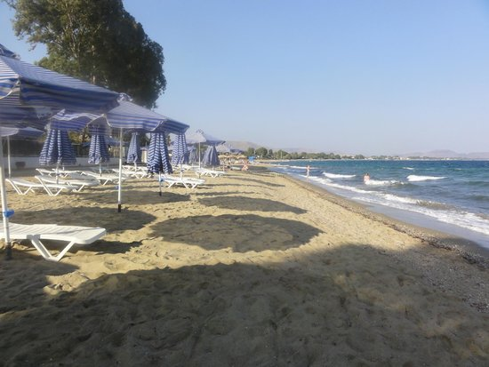 Golden Coast Hotel & Bungalows : The private beach