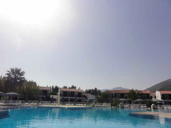 Golden Coast Hotel & Bungalows : Pool