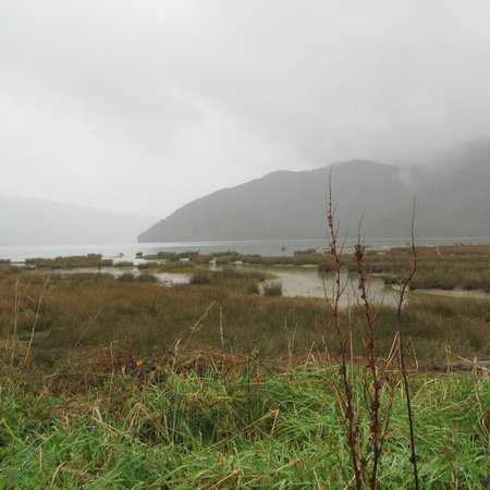 Queen Charlotte Track : Stop and enjoy the view