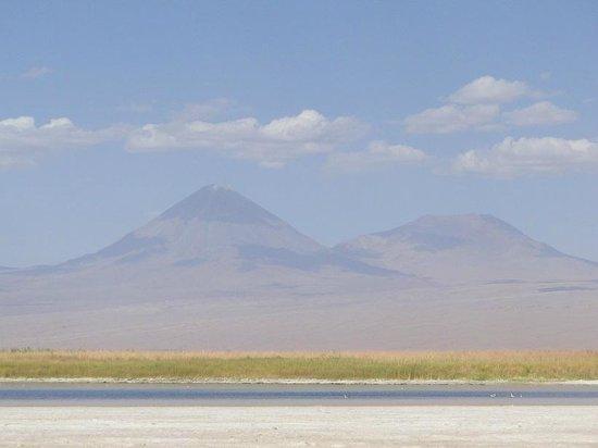 Salar de Atacama: Caminho para o Salar