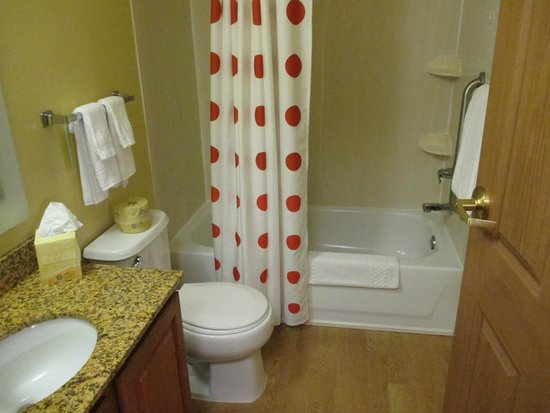 TownePlace Suites Birmingham Homewood : not so clean bathroom