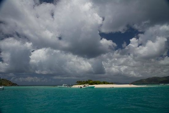 Palm Tree Charters : Sandy Spit