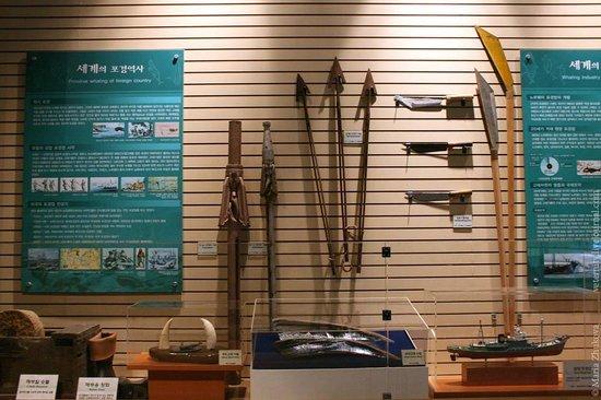 Jangsaengpo Whale Museum: Орудия китобойного промысла