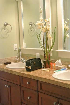 Sandestin Golf and Beach Resort : Bathroom