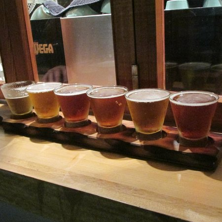 Sprig & Fern Tahuna: Sample the Nelson craft beer