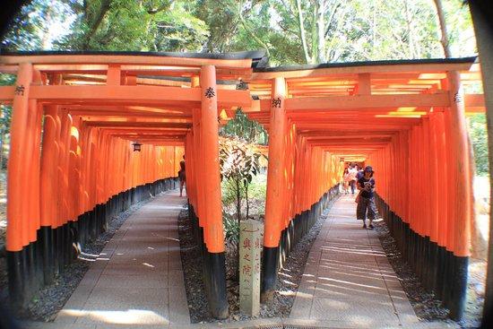 Fushimi Inari-Taisha: which way do you want to take?